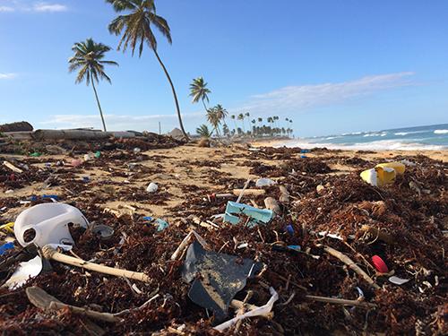 Plastics on a beach. Credits Dustin Woodhouse on Unsplash