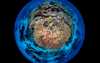 Cover image of Second World Ocean Assessment